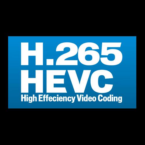 Option HEVC Display